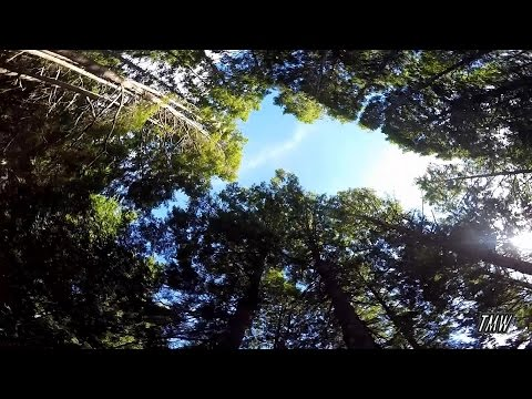 Kejimkujik National Park Camping