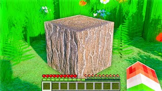 SUPER REALISTIC MINECRAFT VERSION! REAL LIFE MINECRAFT!