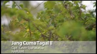 Naruwe - Jang Cuma Tagal II ( Lyrics)