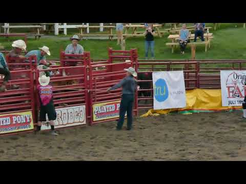 Bull Riding 4 at Orange County Fair Speedway Middletown NY 7-5-2019