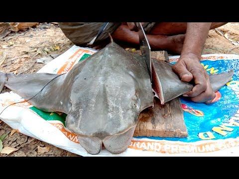 Stingray Fish   Thirukkai Meen   Amazing Cleaning And Cutting Skill   PrepareTv