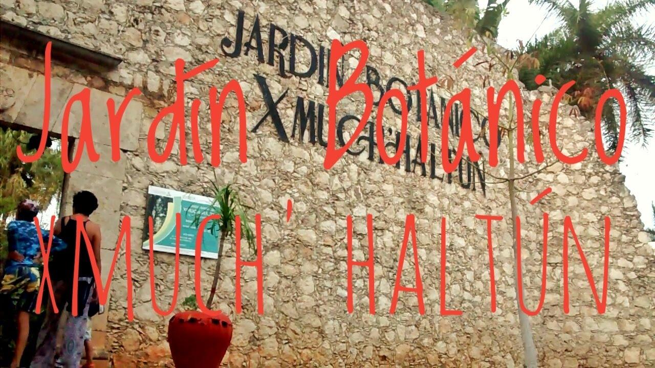 Jard n bot nico xmuch 39 halt n youtube for Jardin botanico xmuch haltun