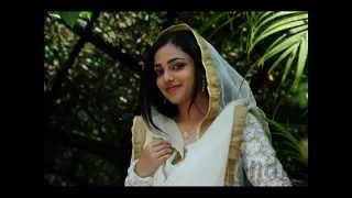 Vathilil Aa Vathilil usthad hotel malayalam movie Video Song HD flv