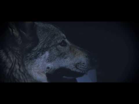 Beltran - LUNA NEGRA (VIDEOCLIP OFICIAL)
