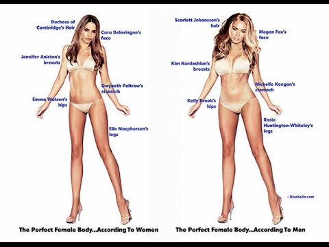 What is the average model height and weight? - Promo Models