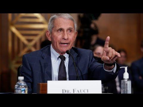'Saint' Fauci 'demolished' by Senator Rand Paul in 'testy' US Congress