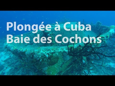 Cuba - Première plongée - Cueva de los Peces