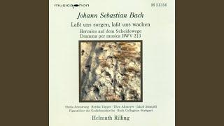 Lasst uns sorgen, lasst uns wachen, BWV 213: Lust der Volker, Lust der Deinen (Chorus)