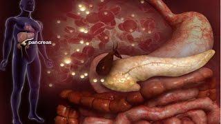 Localizados no corpo órgãos