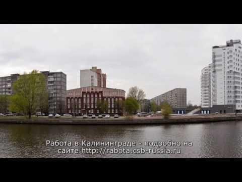 Вакансии в Калининграде: работа от прямых работодателей