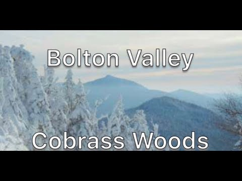 Cobrass Woods // Bolton Valley Vermont // Ski The East