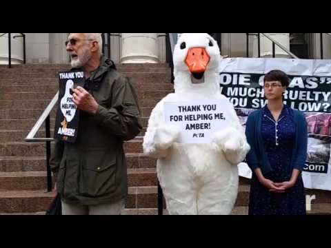 James Cromwell sentenced to jail for 7 days over NY plant protest