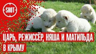 Царь, Режиссёр, Няша и Матильда в Крыму