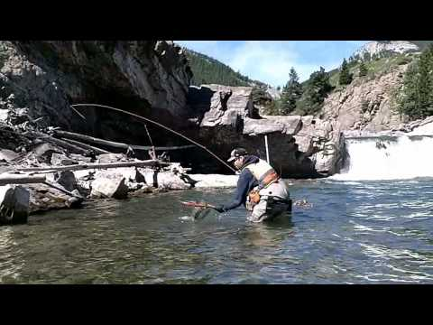 Fly Fishing Southern Alberta - Fishing The Falls