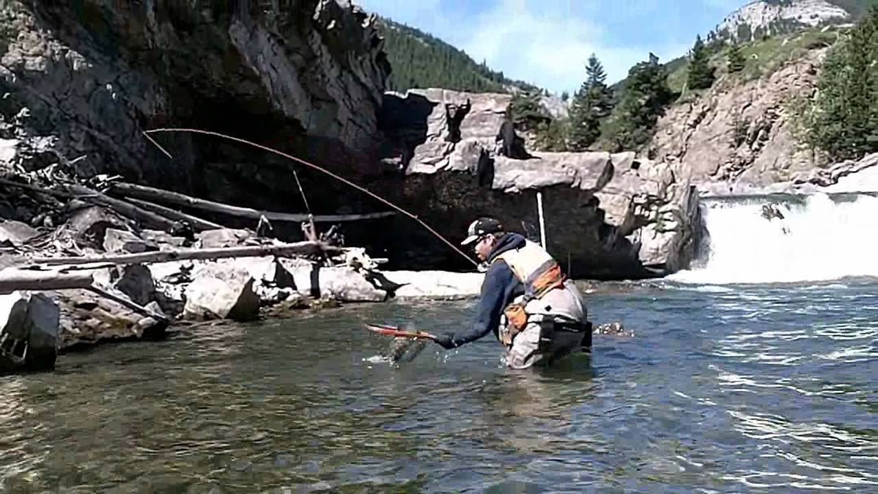 Fly fishing southern alberta fishing the falls youtube for Falls lake fishing