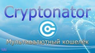 Cryptonator (Криптонатор) - мультивалютный кошелек.  Обзор кабинета и вывод биткоин на яндекс деньги