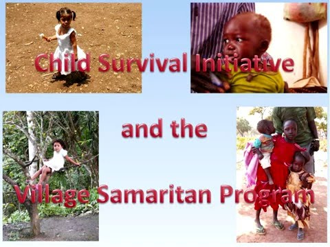 Webinar: The Child Survival Initiative (2013)