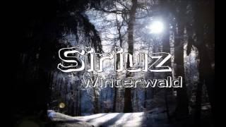 Siriuz - Winterwald