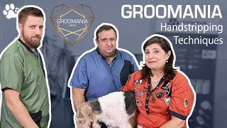 Handstripping Techniques with the Sentinel | Groomania 2020 Grooming Demonstration