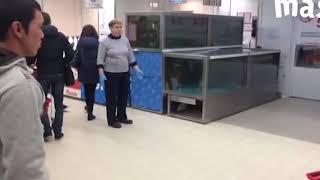 Рибалка в супермаркеті