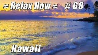 MAUAI Hawaii Keonenui Beach Sunset #68 Beaches Ocean Waves HD relaxing palm tree sounds video