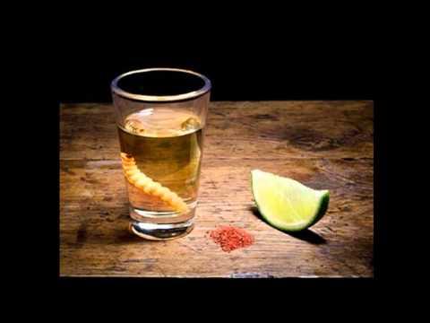 como beber mezcal