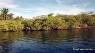 Rio Jacuípe, Camaçari, Bahia - HD (720p)