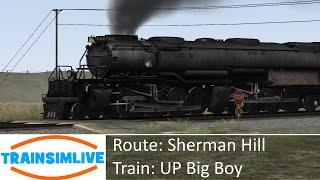 Train Simulator 2015 - Sherman Hill, 4-8-8-4 UP Big Boy