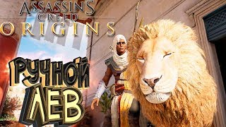 ПРИРУЧАЕМ ЛЬВА - Assassin's Creed Origins [Истоки] - Прохождение #17