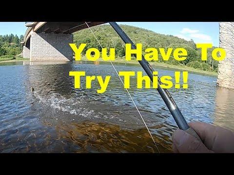 Easy Rig + Easy Technique = Multiple Fish!