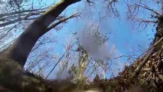 Shakerag Hounds: 2014 March Hunt - Full Run