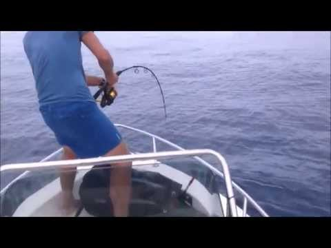 Penn Spinfisher 244lb Tuna