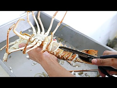 Vietnamese Street Food - LIVE LOBSTER Fried in Tamarind Sauce Vietnam