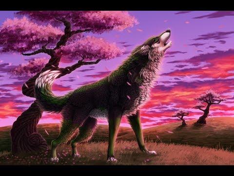 Новое аниме  слайд -шоу от Кити хауз. Красывые  аниме животные. аниме картинки фото