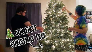 Putting Up Our First Christmas Tree!