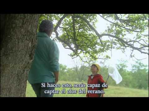 Kimi ga kureta natsu parte 9 sub español