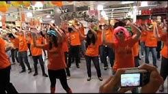 Flashmob Alinéa Avignon Le Pontet ( vidéo officielle ) - Party Rock