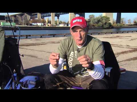 Baits and Rigs for Carp fishing