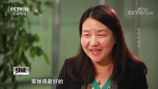 《见证》 20200424 澜湄新华侨 第三集 吴哥的微笑  CCTV社会与法