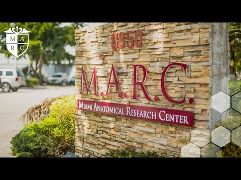 Miami Anatomical Research Institute - M.A.R.C. Institute