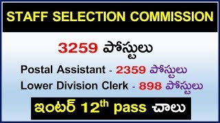 Staff Selection Commission SSC CHSL Job Recruitment Notification | 12th pass Govt jobs in telugu