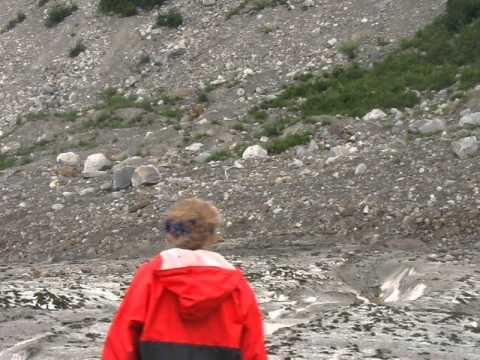 Walker Glacier Alsek River August 2011