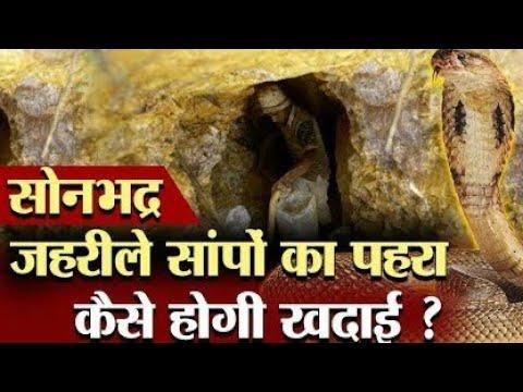 Download सोनभद्र में सोने की खान के पास है सांपों का झुंड | Snake In Son Bhadra | Son Bhadra Gold News