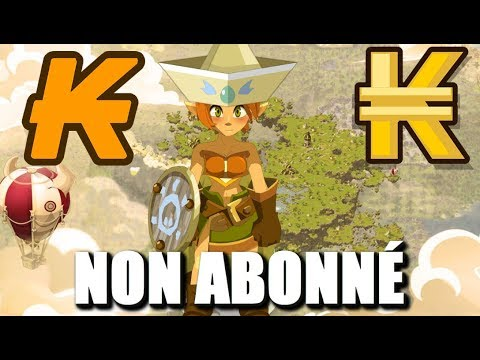 cheat dofus kamas et level