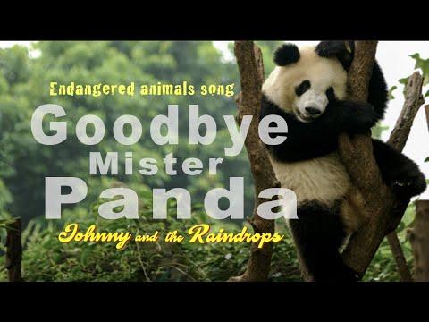 'Goodbye Mr Panda'. Endangered animals song for children.