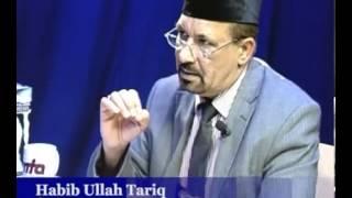 Die wissenschaftliche Blüte des Islam - Islam im Brennpunkt