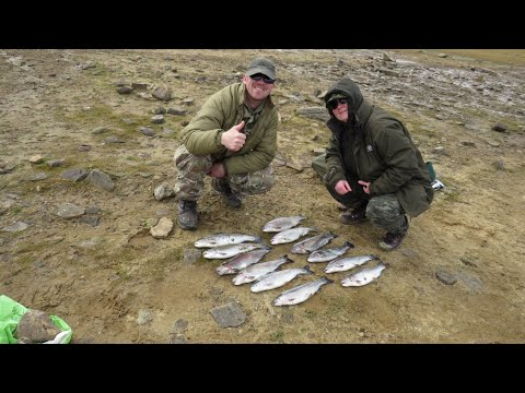 Brilliant Trout Fishing Derwent Reservoir(12 Fish)