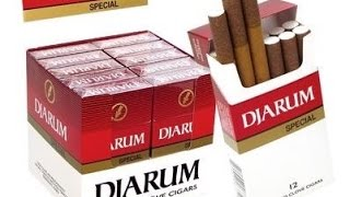 Cheap Cigar Review : Djarum Mini Clove Cigars (Cigarettes Really...)