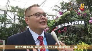 中国北京世界园艺博览会今晚开幕 我国也参展