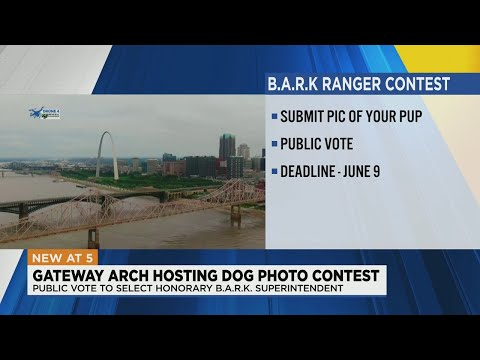 Gateway-Arch-looking-for-pup-to-be-B.A.R.K.-superintendent